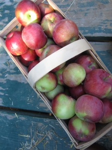 A basket of apples from the Elegant Farmer