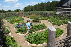 I was in LOVE with the heirloom gardens at each farm.